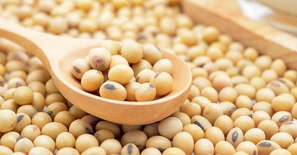 ăn mầm đậu nành tăng cân,ăn mầm đậu nành có tăng cân không,ăn mầm đậu nành tăng cân đúng cách,cách ăn mầm đậu nành tăng cân