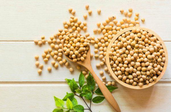 mầm đậu nành giá bao nhiêu,bột mầm đậu nành giá bao nhiêu,mầm đậu nành bao nhiêu tiền,mầm đậu nành bao nhiêu tiền một hộp,bột mầm đậu nành bao nhiêu tiền,mầm đậu nành giá bao nhiêu tiền,bao nhiêu tiền 1kg mầm đậu nành,mầm đậu nành có giá bao nhiêu,mầm đậu nành nguyên xơ giá bao nhiêu,giá mầm đậu nành nguyên xơ,viên mầm đậu nành giá bao nhiêu,mầm đậu nành tăng vòng 1 giá bao nhiêu,giá 1kg mầm đậu nành