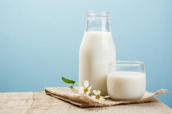 uống mầm đậu nành với sữa ông thọ, uống mầm đậu nành với sữa tươi, cách pha mầm đậu nành với sữa tươi, bột mầm đậu nành pha với sữa tươi, mầm đậu nành pha với sữa tươi, cách pha mầm đậu nành với sữa tươi, pha mầm đậu nành với sữa tươi, Cách uống mầm đậu nành với sữa tươi tăng cân, Cách pha mầm đậu nành với sữa tươi đắp mặt, Bột mầm đậu nành pha sữa tươi giúp trị sạm da